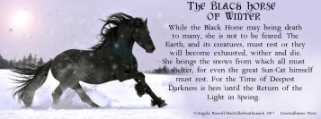 black horse of winter